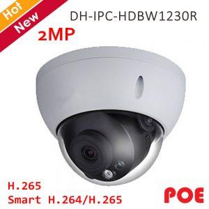 DH-IPC-HDBW1230R